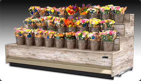 European style refrigerated floral display